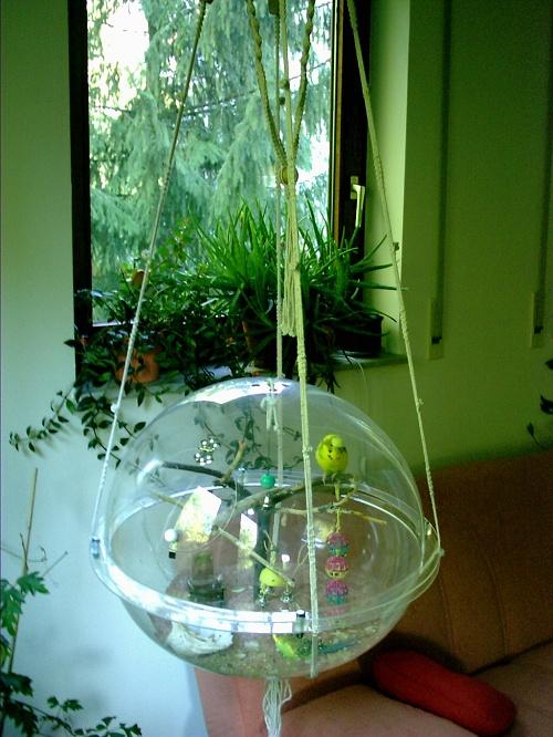 Aviarium ist ein Vogelkäfig mit Wohlfühloase,  ein artgerechtes und klimatisiertes Zuhause für Kleinvögel